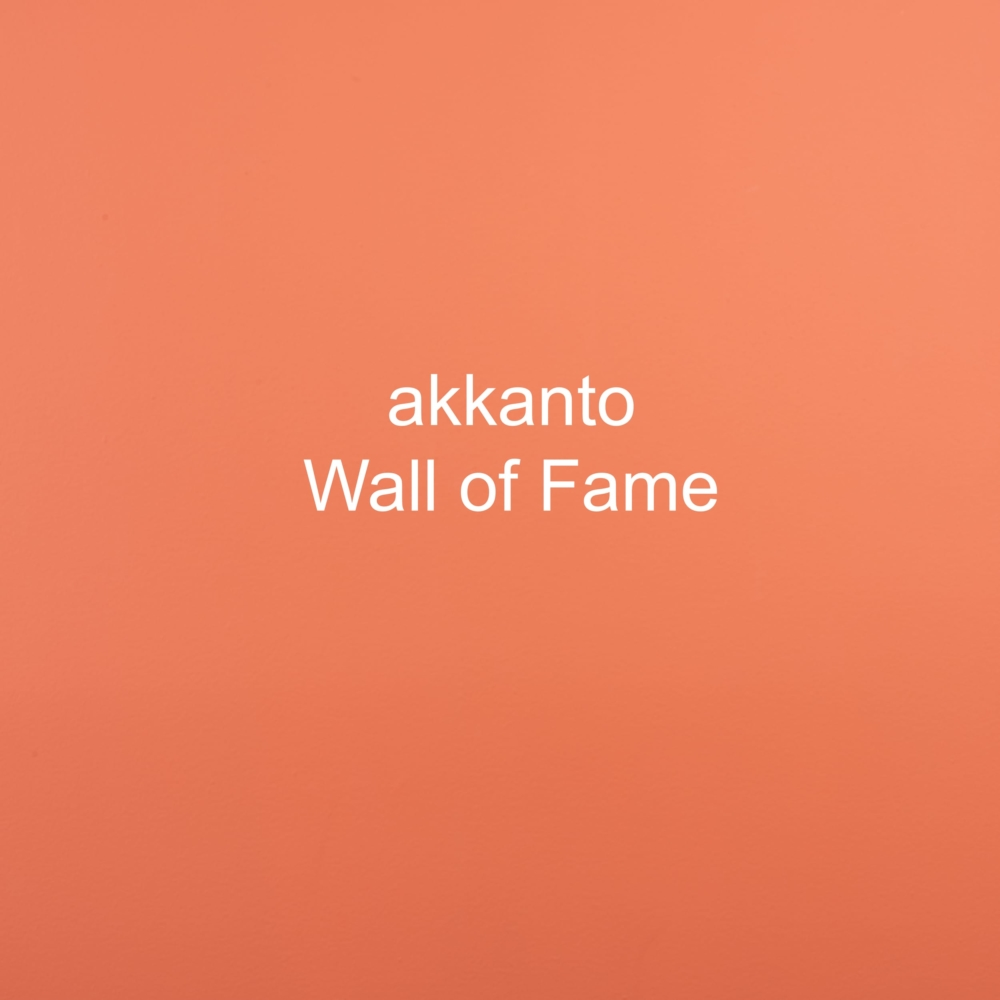 Teambuilding akkanto, multiple talents, multiple passions, a common sense