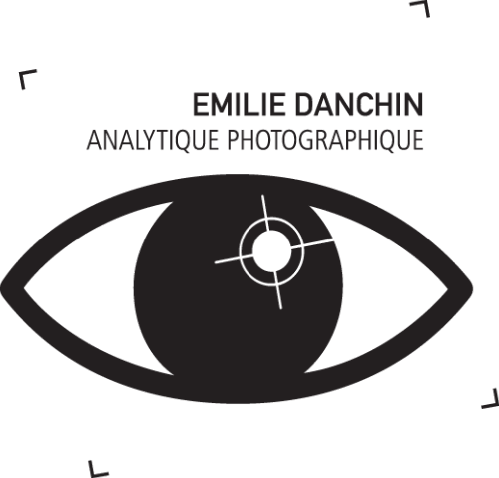 Analytique photographique logo @ Émilie Danchin